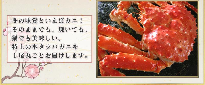 冬の味覚といえばカニ! そのままでも、焼いても、 鍋でも美味しい、 特上の本タラバガニを 1尾丸ごとお届けします。