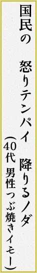 国民の 怒りテンパイ 降りるノダ (つぶ焼きイモー 男性 40代)